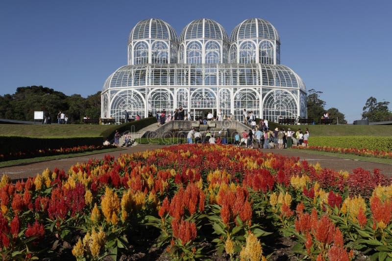 botaniska curitibaträdgårdar royaltyfri fotografi