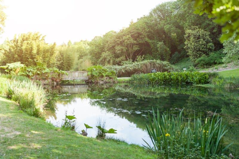 Botaniska trädgården Le Vallon du stack Alar Brest France 27 kan 2018 - den lilla sjön och brosommarsäsongen arkivbilder
