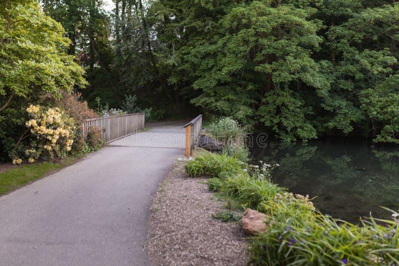 Botaniska trädgården Le Vallon du stack Alar Brest France 27 kan 2018 - den lilla sjön och brosommarsäsongen royaltyfria foton