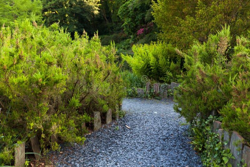 Botaniska trädgården Le Vallon du stack Alar Brest France 27 kan 2018 - ett gå spår royaltyfri fotografi