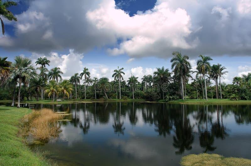 botaniskt fairchild trädgårds- tropiskt arkivfoto