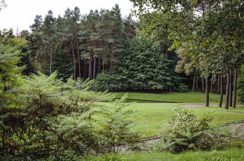 Botaniskt parkera med en uppsättning av träd arkivfoton