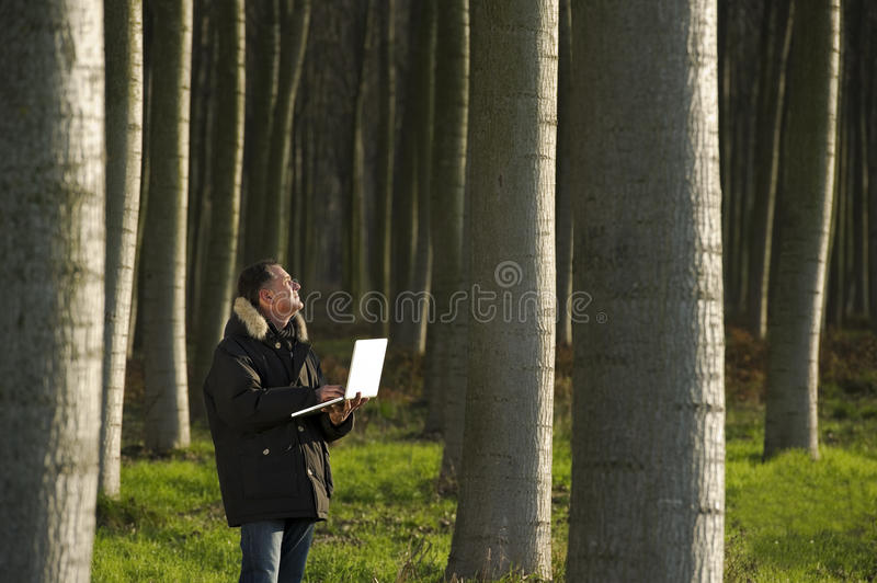 Botanist Working Outdoors Royalty Free Stock Images
