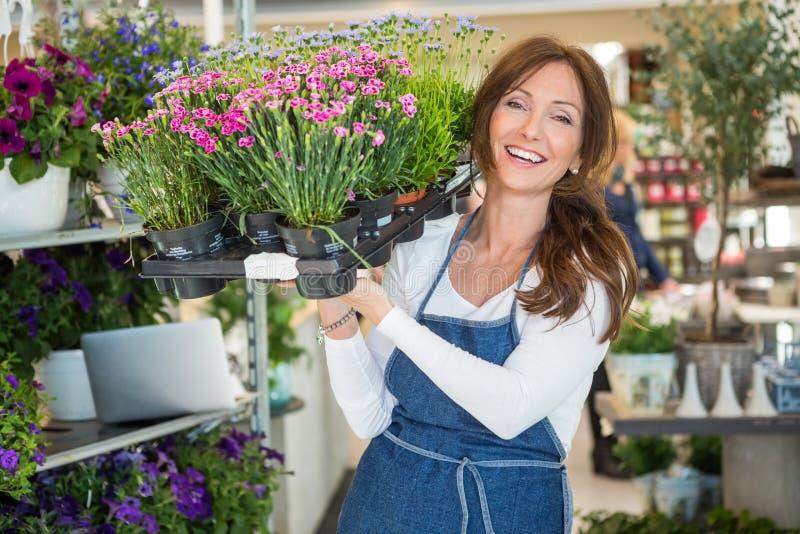 Botaniste de sourire Carrying Crate Full de fleur photos libres de droits