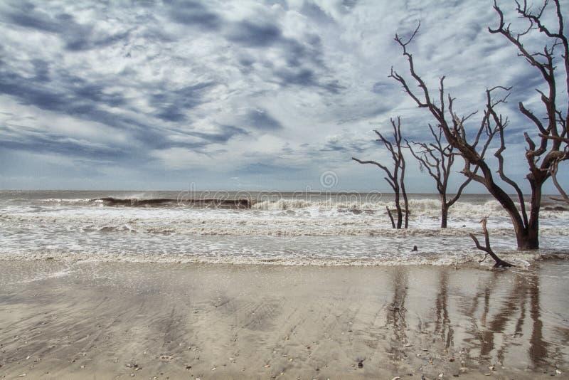 Botany Bay Beach royalty free stock photos