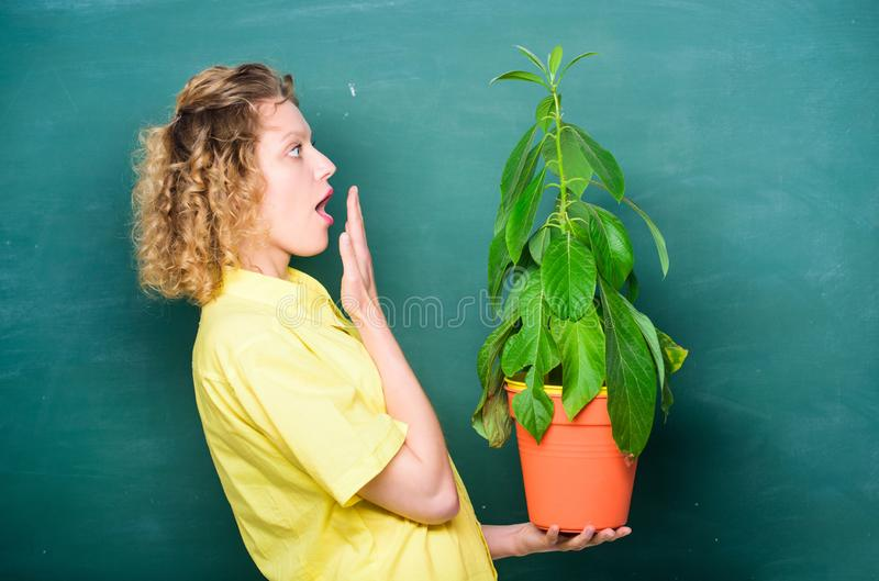 Botany is about plants flowers and herbs. Girl hold plant in pot. Take good care plants. Plants that sure stress relief royalty free stock images