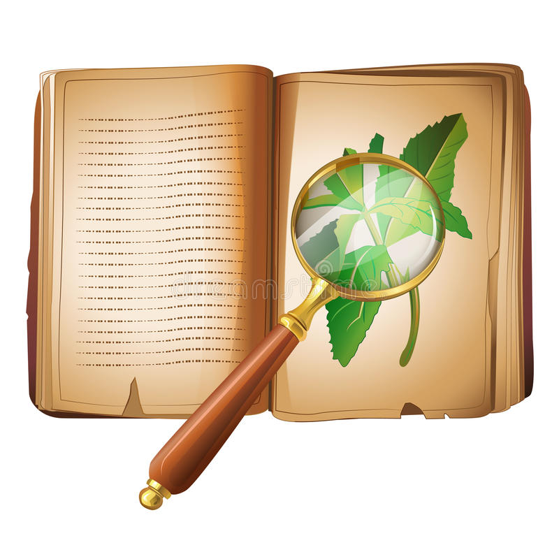 Botany Research. The research of botanics and plants stock illustration