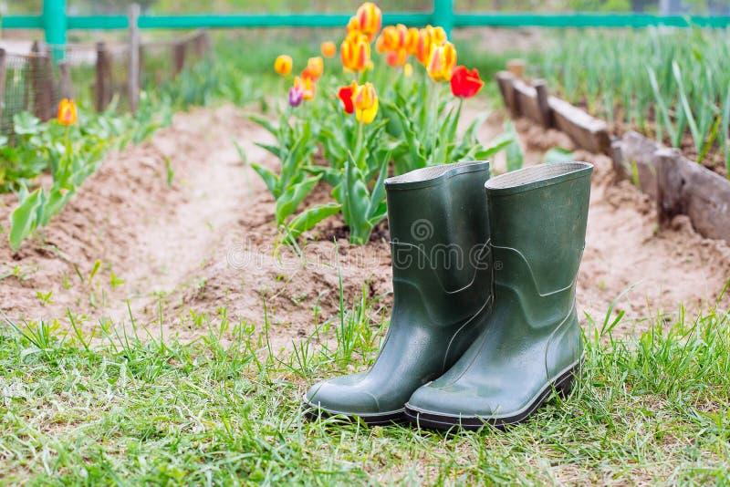 Botas de borracha na grama - conceito da mola imagem de stock royalty free