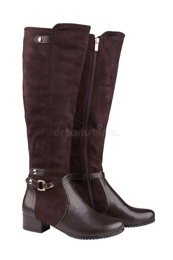 Botas de elevação de joelho fêmeas elegantes fotografia de stock royalty free