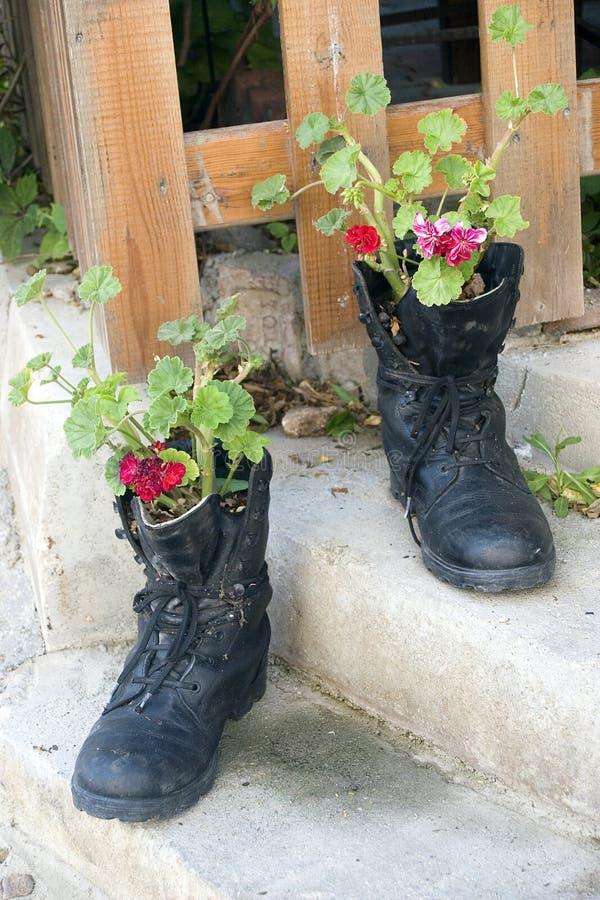 Botas e flores militares imagem de stock royalty free