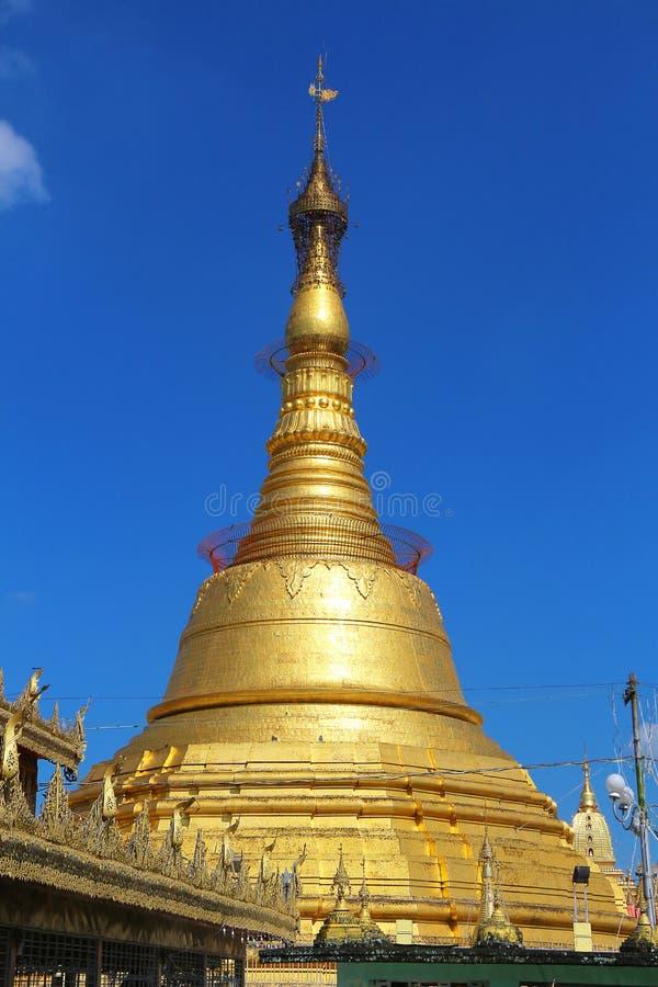 Botatanug pagod - Yangon, Myanmar Rangoon, Burma royaltyfri bild