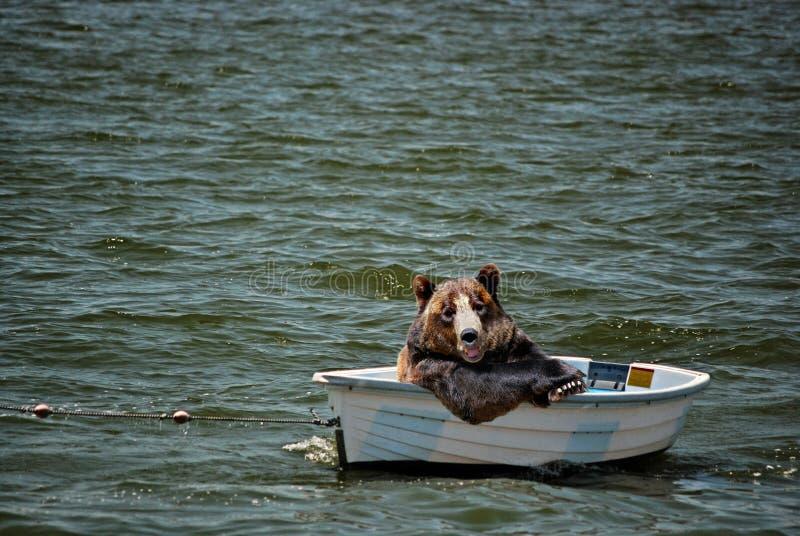 Bote del oso fotos de archivo libres de regalías