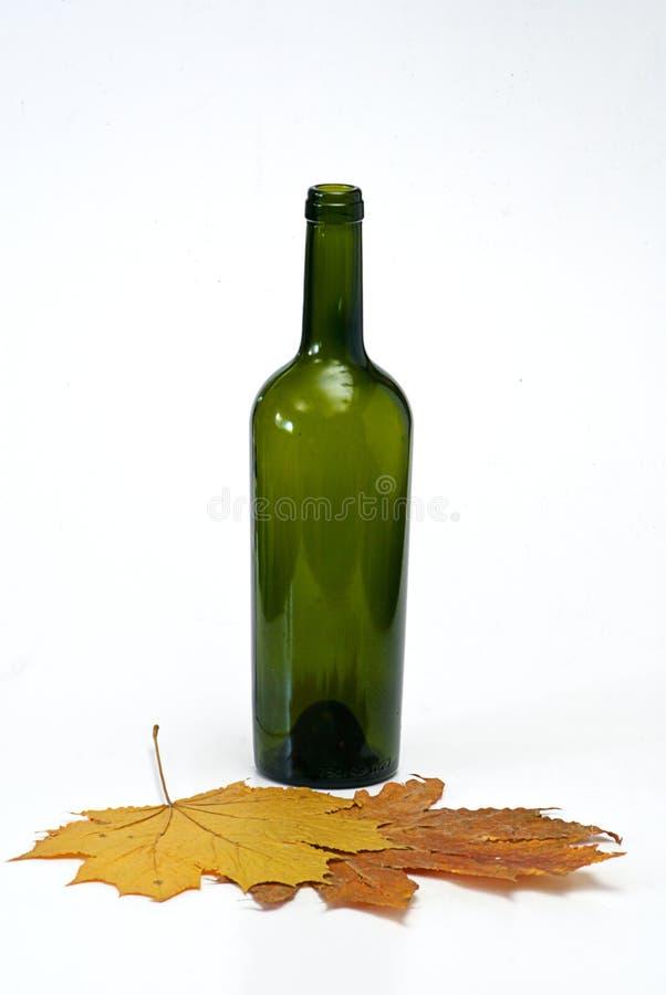 Botella con el corcho fotografía de archivo libre de regalías