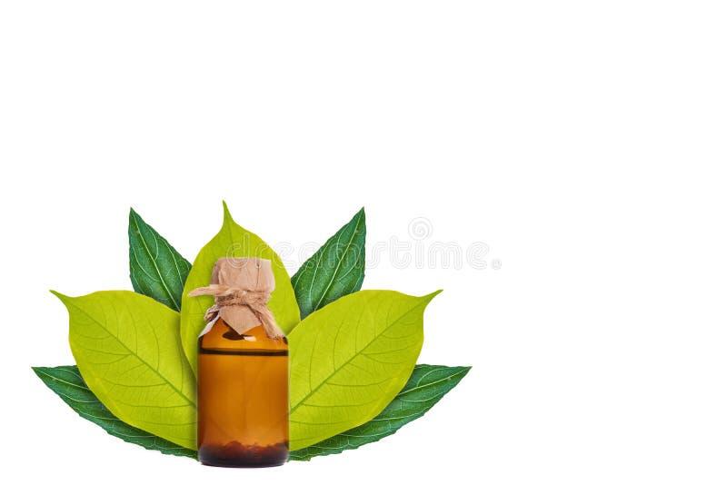 Botella con la medicina en el fondo de hojas verdes Aislado en blanco noción del origen natural imagen de archivo