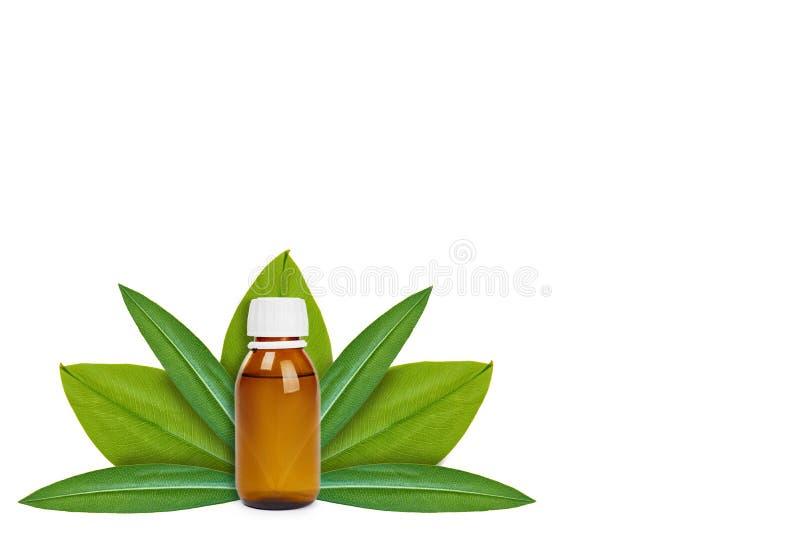 Botella con la medicina en el fondo de hojas verdes Aislado en blanco noción del origen natural foto de archivo