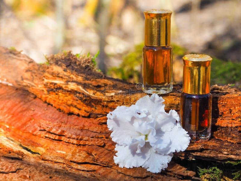 Botella de árbol del agarwood del aceite contra la corteza Fragancias árabes del perfume de la esencia del oud o del aceite del a fotos de archivo