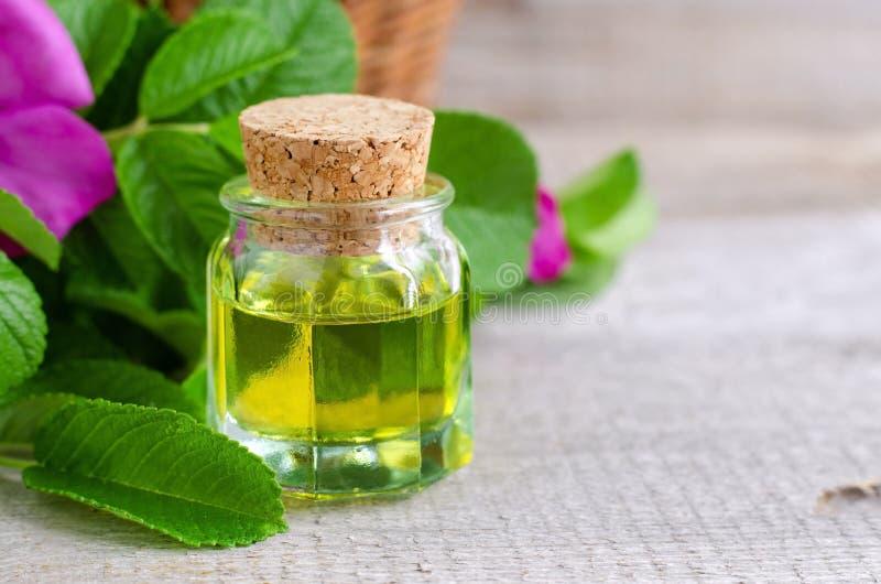 Botella de aceite cosmético natural (del masaje) foto de archivo libre de regalías