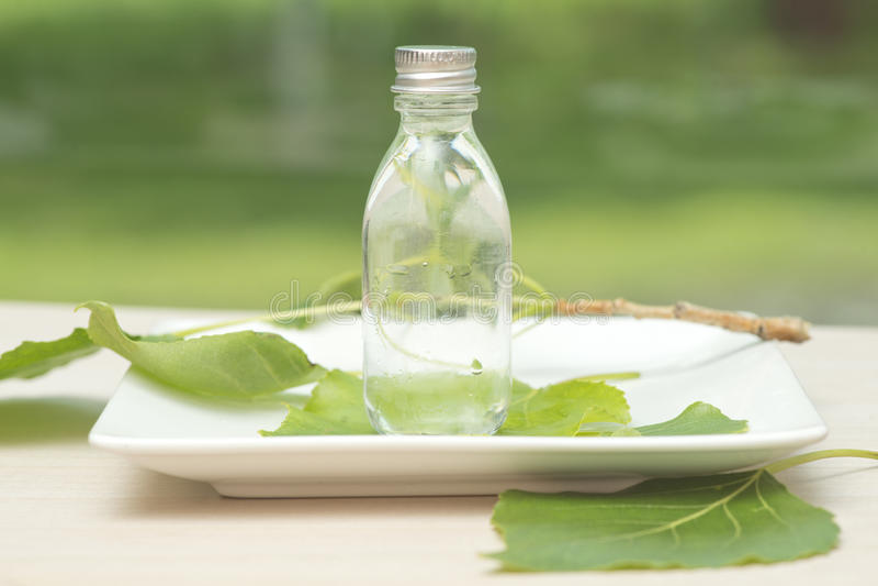 Download Botella de aceite esencial imagen de archivo. Imagen de belleza - 41916589