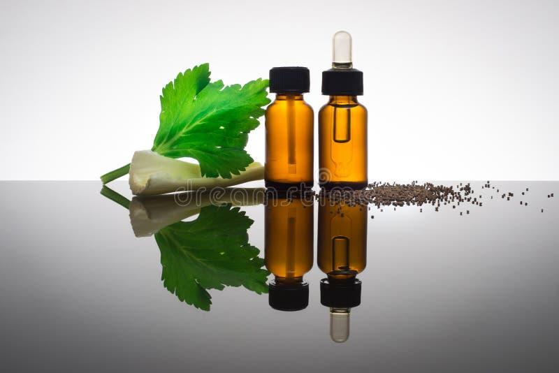 Botella de aceite esencial con las semillas de apio imagen de archivo libre de regalías