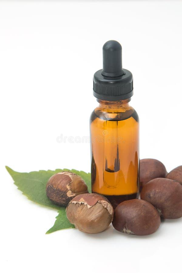 Botella de aceite esencial de la castaña, aceite del masaje del balneario imagen de archivo