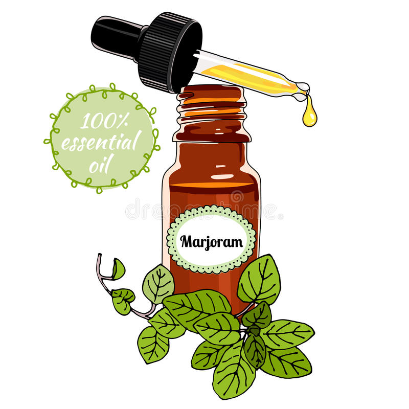 Botella de aceite esencial de la mejorana con el dropper stock de ilustración