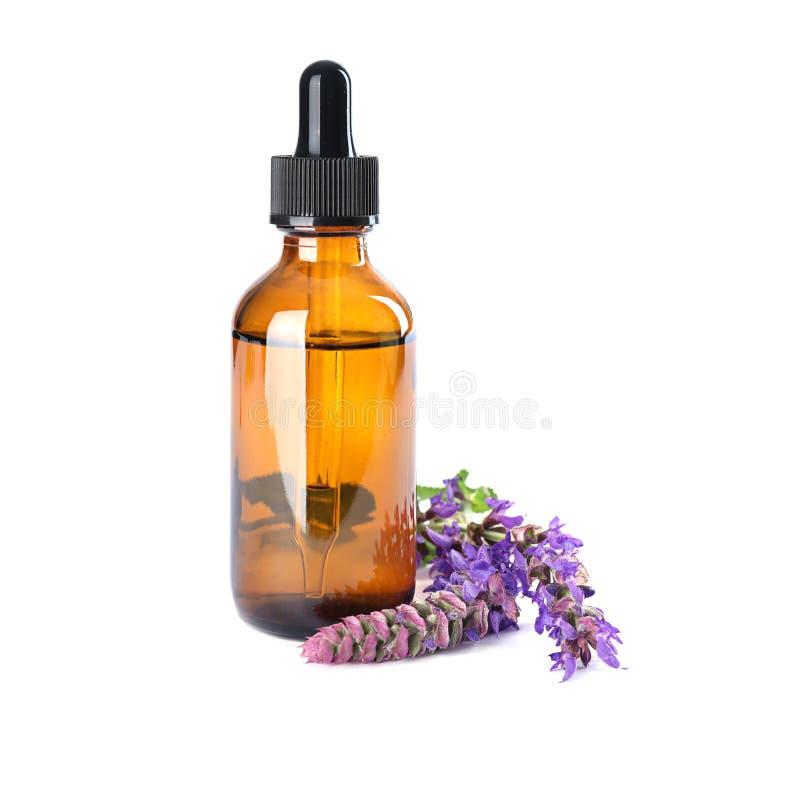 Botella de aceite esencial sabio y de flores aislados imagen de archivo libre de regalías