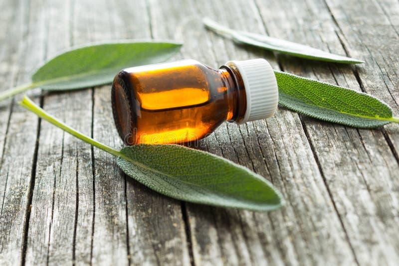 Botella De Aceite Sabio Esencial Foto de archivo - Imagen de salud ...