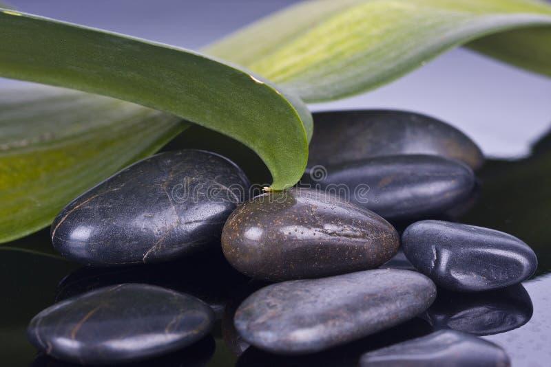 Botella de balneario del aceite del masaje imagen de archivo