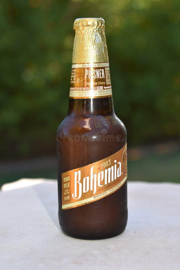 Botella de cerveza de Bohemia importada de México imagen de archivo libre de regalías