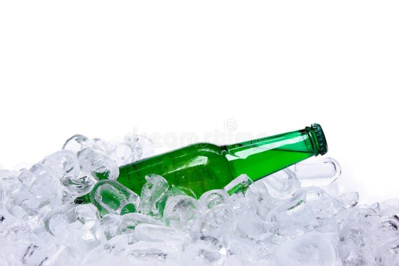 Botella de cerveza en cubos de hielo fotografía de archivo libre de regalías