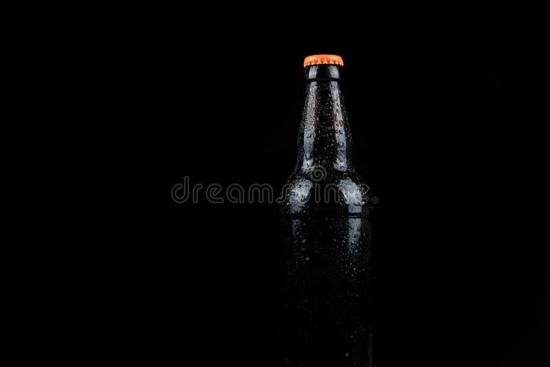 Botella de cerveza fría imágenes de archivo libres de regalías