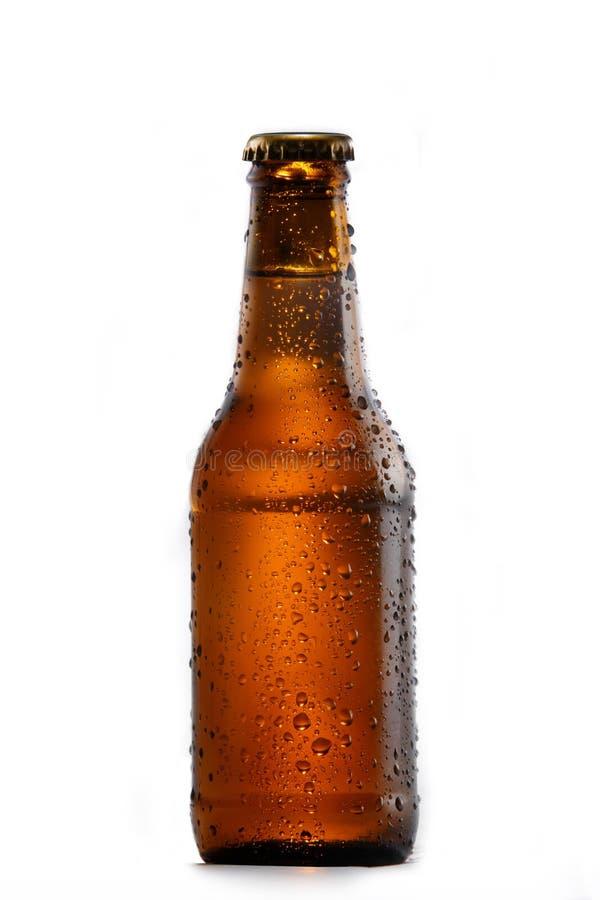 Botella de cerveza fría fotos de archivo