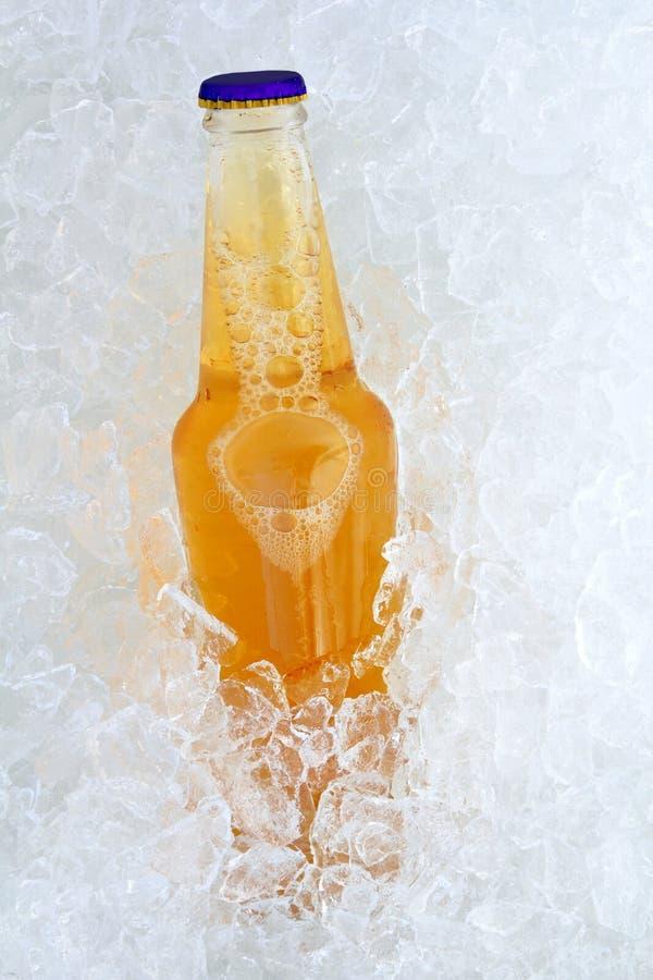 Botella de cerveza sobre el vidrio helado fresco del hielo foto de archivo
