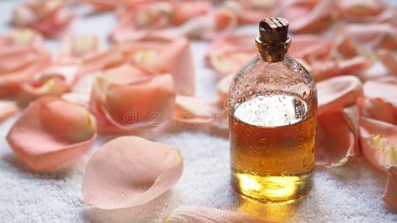 Botella de cristal de aceite del aroma entre los pétalos color de rosa pálidos en la toalla de Terry blanca BALNEARIO y concepto  fotografía de archivo libre de regalías