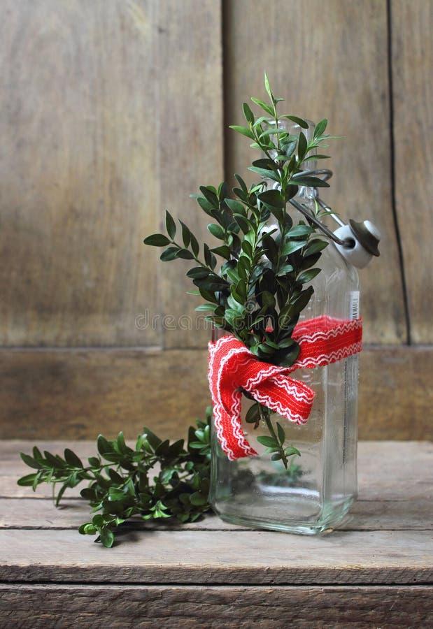 Botella de cristal con las ramitas verdes imagen de archivo libre de regalías
