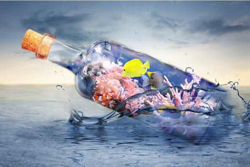 Botella de cristal con vida marina imagen de archivo libre de regalías