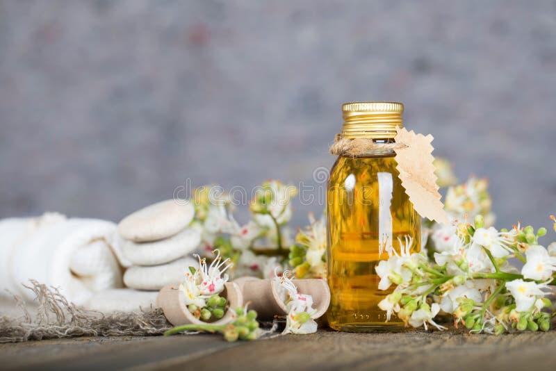 Botella de cristal de extracto del aceite de la castaña de caballo foto de archivo libre de regalías