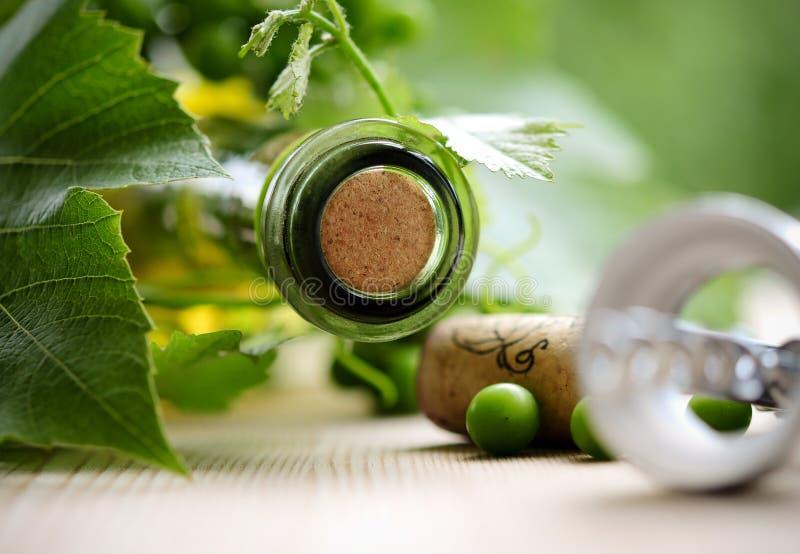 Botella de hojas del vino y del verde foto de archivo libre de regalías