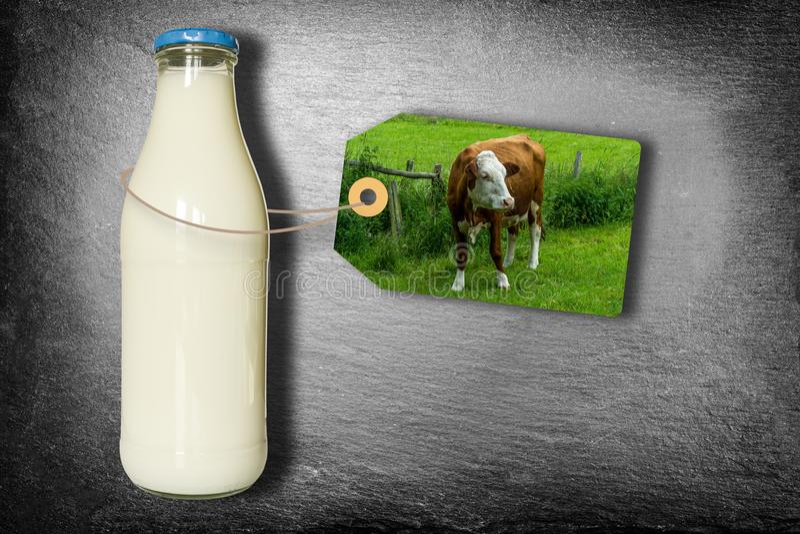 Botella de leche con la etiqueta - vaca lechera en prado - aislada en pizarra imágenes de archivo libres de regalías
