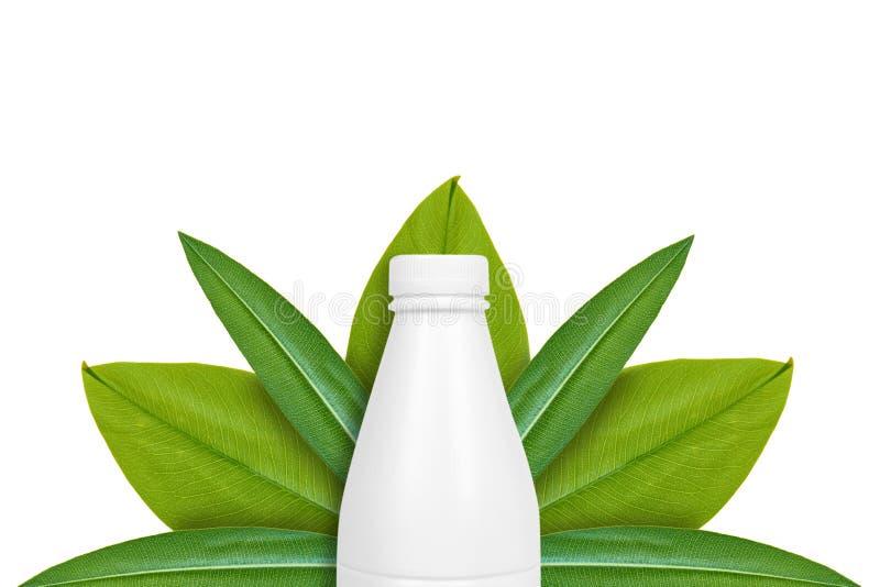 Botella de leche en el fondo de hojas verdes Aislado en blanco noción del origen natural foto de archivo libre de regalías