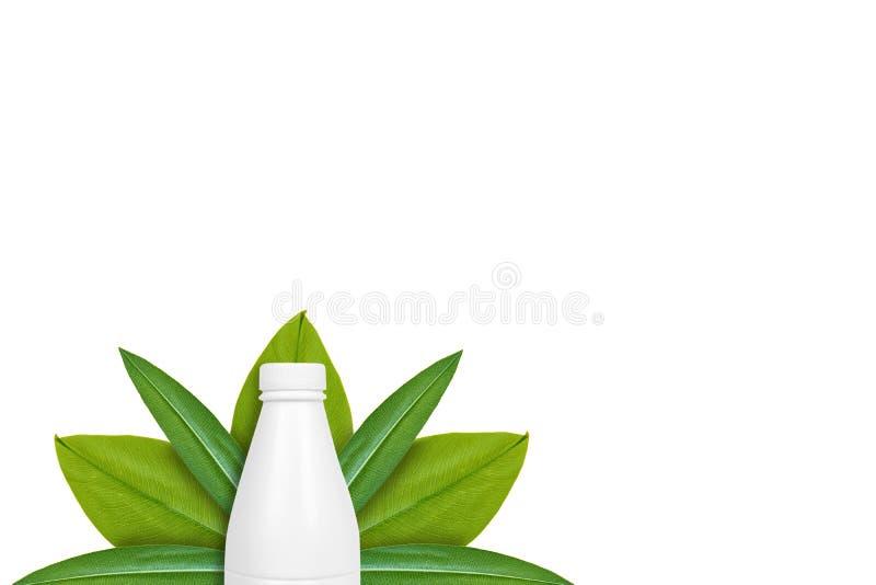 Botella de leche en el fondo de hojas verdes Aislado en blanco noción del origen natural imagen de archivo