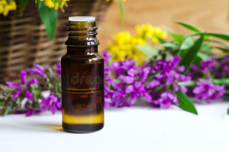 Botella de petróleo esencial foto de archivo libre de regalías