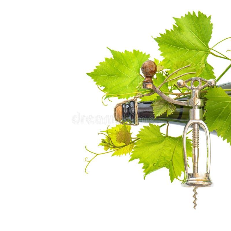 Botella de vino con el sacacorchos y las hojas verdes frescas de la vid fotografía de archivo