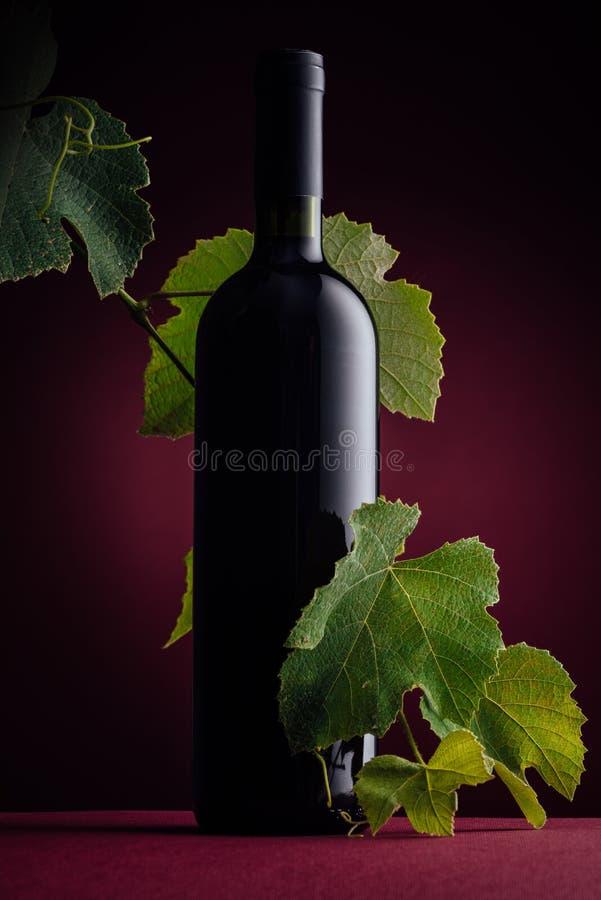 Botella de vino de Rew con la rama de la vid imagen de archivo libre de regalías