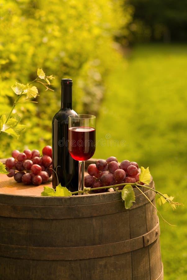 Botella de vino rojo, copa y uvas en viñedo fotos de archivo