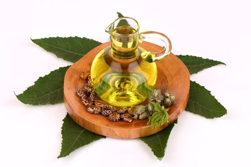 Botella del aceite de ricino con las frutas, las semillas y la hoja del echador foto de archivo