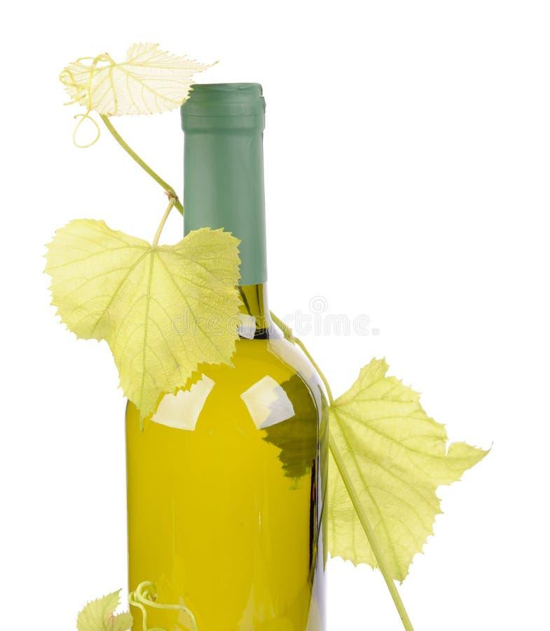 Botella del vino blanco y hoja de las uvas foto de archivo