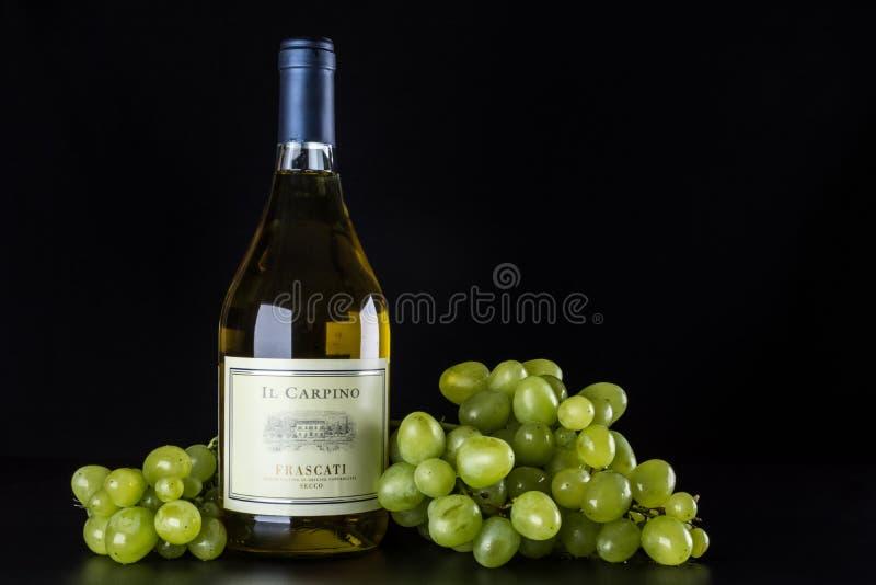 Botella del vino blanco y un manojo de uvas maduras en un fondo negro imagen de archivo
