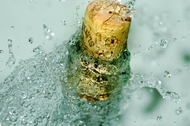 Botella helada de vino fotografía de archivo