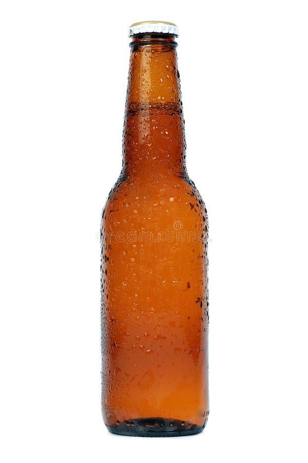 Botella marrón de la cerveza fotografía de archivo libre de regalías
